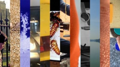 A series of different images vertically sliced together. There are images with insects, a vehicle, a person, and blocks of yellow and orange colours.
