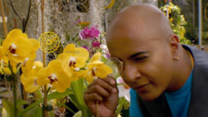 A Black person with blue tshirt, a waistcoat, and gold jewellery is examining with a microscope a yellow flower in a greenhouse filled with greenery and colourful flowers.