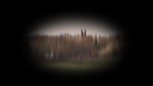 A blurred image of a park with people walking in it and trees and buildings in the background. The image is circular, surrounded by black.